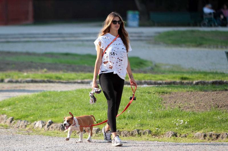 La felicit di passeggiare con il cane umbriaoggi for Pettorali diversi