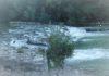 In canoa lungo il Tevere