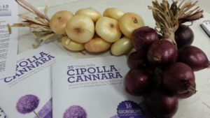 cipolla di Cannara