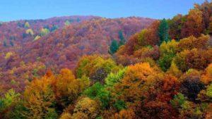 colline umbre in autunno