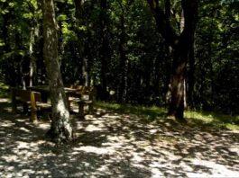 Parco-sette-frati