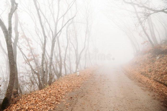 Fra la nebbia d'autunno