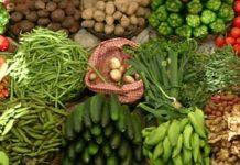 mercato contadino al coperto