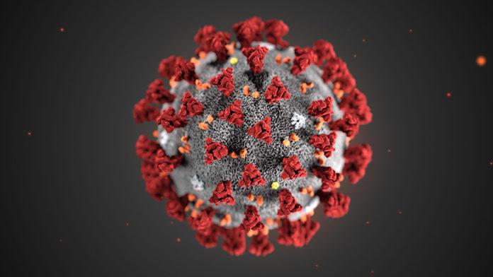 coronavirus Umbria