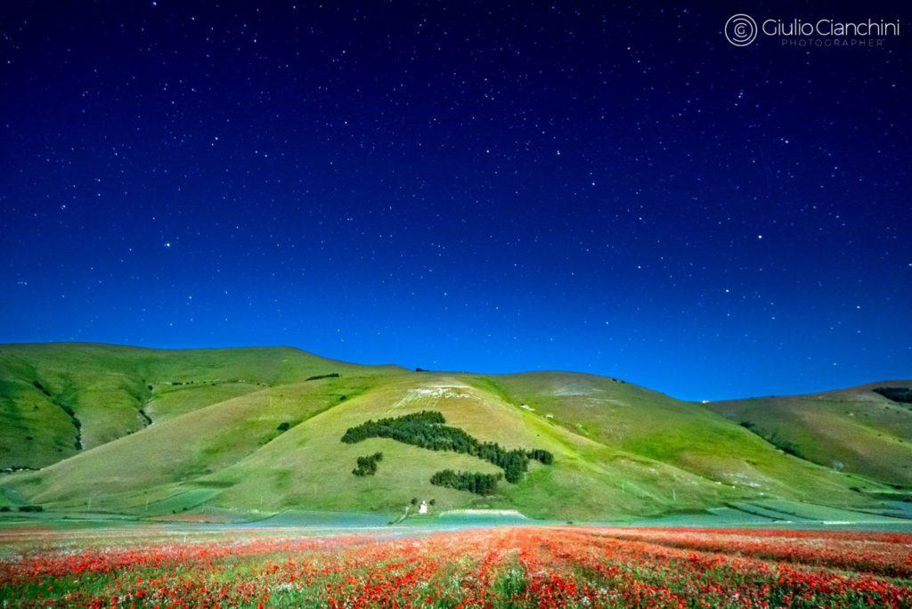 Fiori e stelle a Castelluccio_7