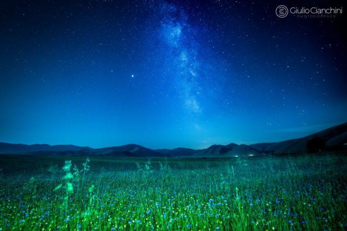 Fiori e Comete a Castelluccio_5