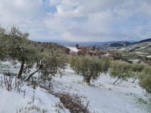 foto dalla valle del menotre 5