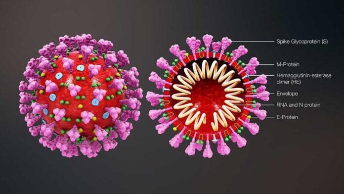 covid-19-e-vaccini